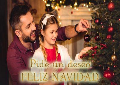 deseo navidad