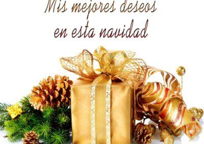 en navidad mis mejores deseos