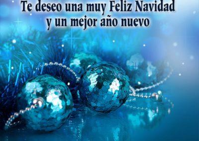 feliz navidad y mejor año nuevo