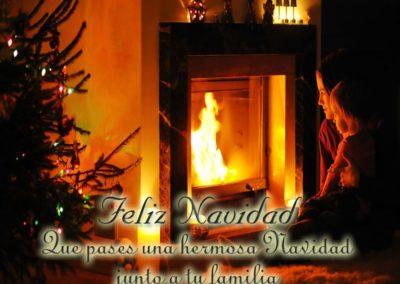 hermosa navidad junto a tu familia