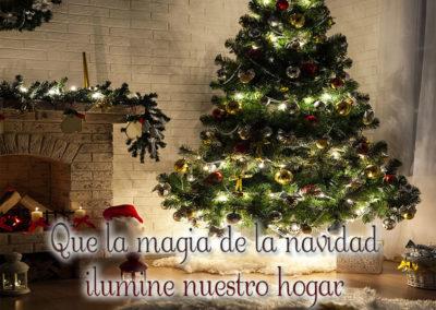 la navidad ilumine nuestro hogar